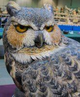 2015-LWCCG-OWL