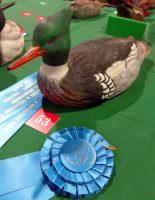 2015-LWCCG-PrizeRibbons