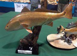 2015-LWCCGRedfish